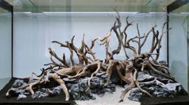 Spider wood 25-35cm