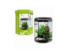 Hexa aquarium set