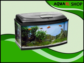 Classic box 80 panorama aquarium