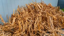 Boutique stump 55-70cm