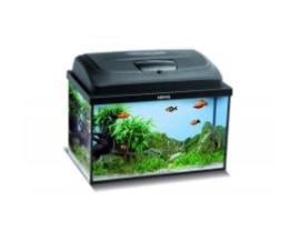 Classic box aquariums