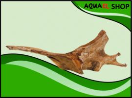 Mangrovewood Large - Aquarium decoratie mangrove hout