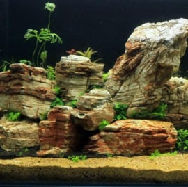 Longwang stone 10-20cm - aquarium decoratie stenen