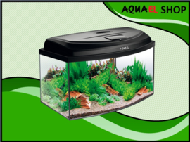 Classic box 60 panorama aquarium
