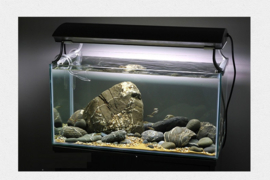 Brook stone 10-15cm - aquarium decoratie stenen