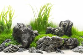 Grey Luo Hanshi 10-15cm - aquarium decoratie stenen