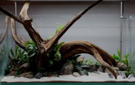 Fine sinking wood 35-50cm  - Aquarium decoratie mangrove hout