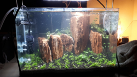 Red Wood stone 20-30cm - aquarium decoratie stenen