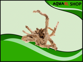 Root Driftwood Small - Aquarium decoratie hout spiderwood