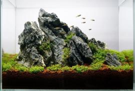 Ordinairy Tsinglung 20-30cm  - aquarium decoratie steen