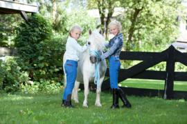 QHP | Rijbroek Junior Pearl