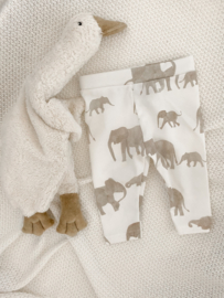 Legging olifantjes