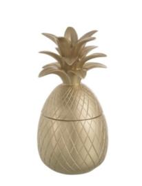Beeld ananas