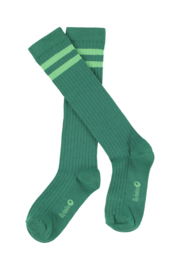 Lily Balou - Jordan Knee Socks Striped Shady Glade