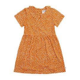CarlijnQ - Collar Dress Short Sleeves Golden Sparkles