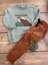 Carlijn Q - Sweater with Print Mountain Air