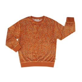 Carlijn Q - Velours Sweater Mountain Air Sparkles