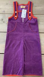 Alba - Ben Pocket Crawlers Purple