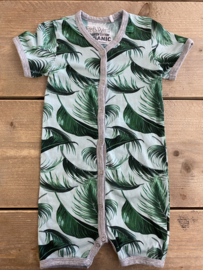Freds World - Palm Leaves SS 74