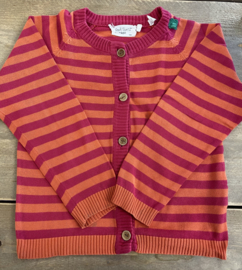 Fred's World - Striped Cardigan