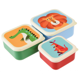 Rex London - Colourfull Creatures Snack Boxes (set of 3)