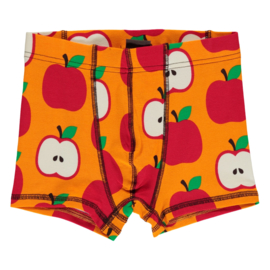 MAXOMORRA CLASSIC - Boxer Shorts Apple