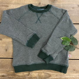 Froy&Dind - Sweater Green 98