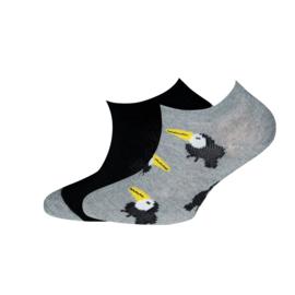 Ewers - Sneaker 2-Pack Toucan