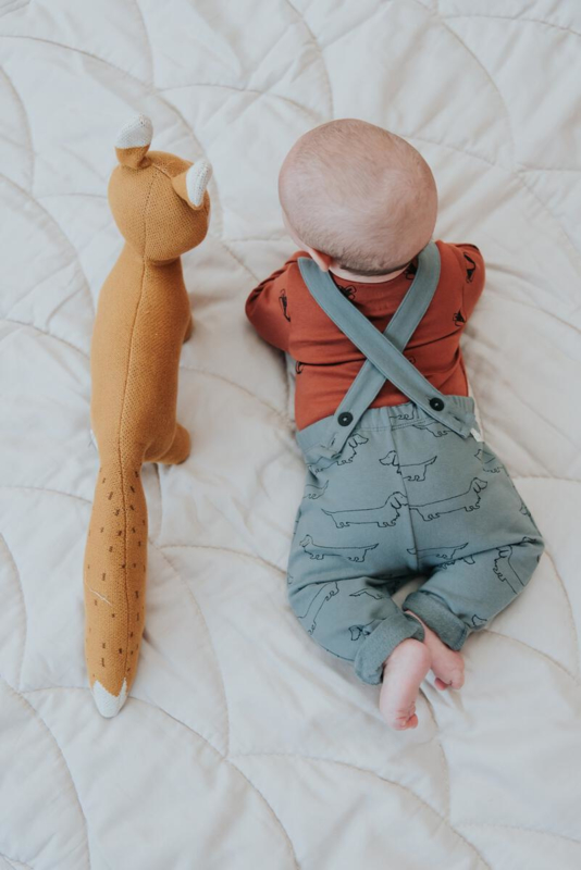 Sproet&Sprout - Suspenders Pants Sausage Dog Lake Blue