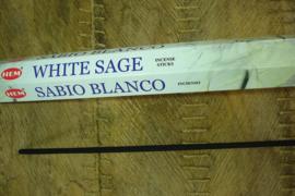 [ N-0501 ] TUIN - WIEROOK; White Sage, per buis á 10 sticks