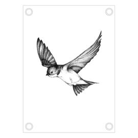 ZWALUW | Tuinposter 50x 70
