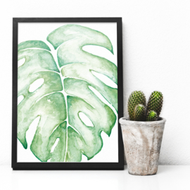 Monstera kleur | A5 Poster