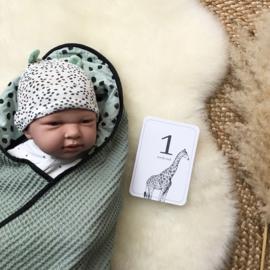 Mijlpaalkaarten Baby 0 tot 1 jaar