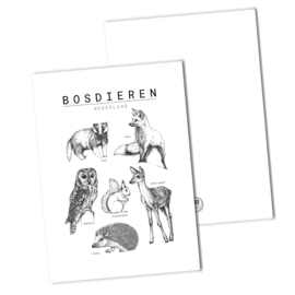 Bosdieren collage | kaart