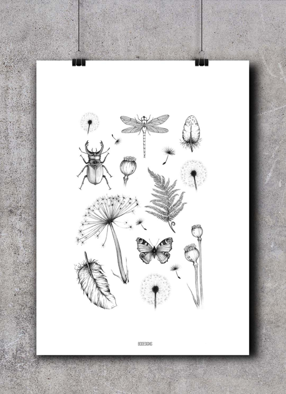 Poster | Natuur collage - oud model