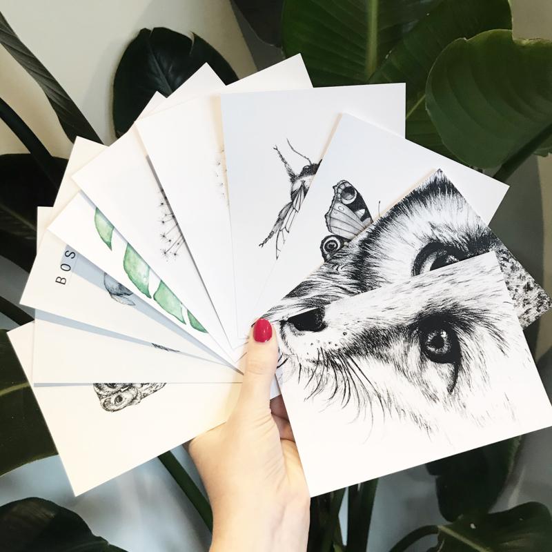 10 Stuks kaarten
