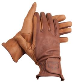 Handschuh vd Kamp