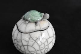 Schildpad urn