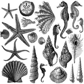 IOD stempels Seashore