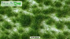 Graspollen late lente - lang