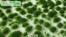 Graspollen late lente - kort