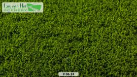 Weeds medium green - low