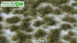 Graspollen vroege herfst - kort