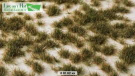 Graspollen vroege winter - kort