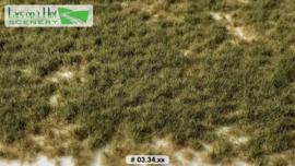 Graspollen weiland herfst - kort