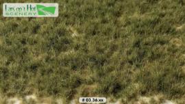 Grass tufts pasture autumn - long