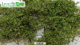 Briar Patch - medium green