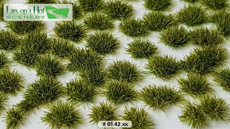 Graspollen late zomer - kort