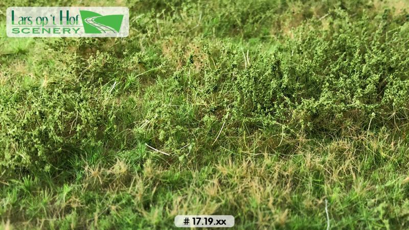 Wilde berm lente