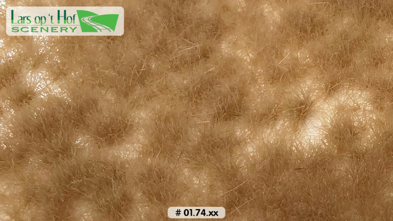 Grass tufts arid - long